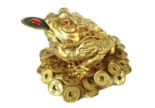 where to place the feng shui money frog feng shui owl